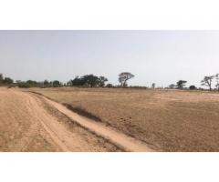 TERRAIN AGRICOLE A VENDRE 3722m²