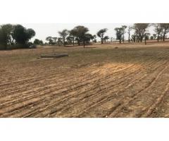 TERRAIN AGRICOLE A VENDRE 10 ha